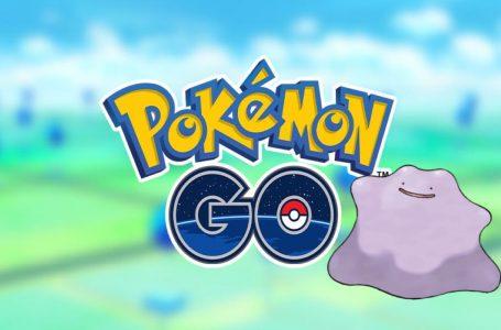 How to Catch Ditto in Pokémon Go