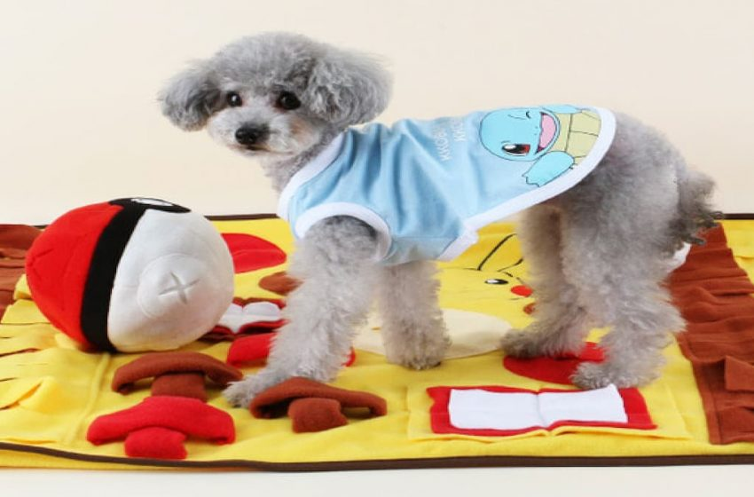 Fans can dress up their dogs with Pokémon gear, and it's adorable