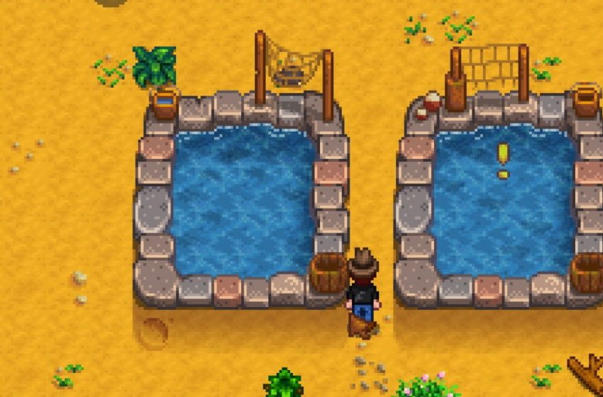 The best fish for fish ponds in Stardew Valley