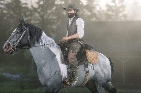 Red Dead Redemption 2 Cooking Recipes Guide   Ingredients Source, And Benefits