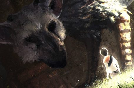 How to Command Trico in The Last Guardian
