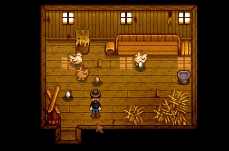 How to feed chickens in Stardew Valley