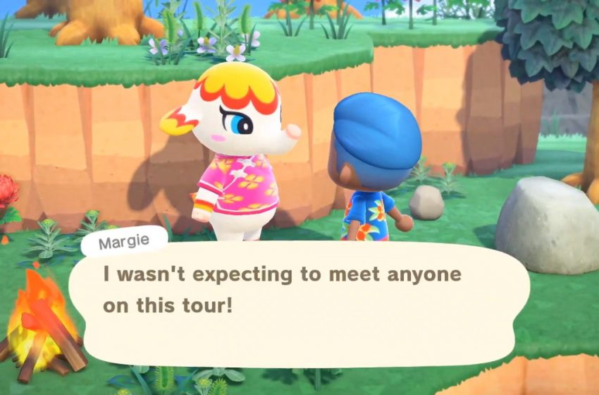 Mystery tours in Animal Crossing: New Horizons make for random adventures